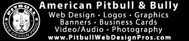Pitbull Web Design Pros